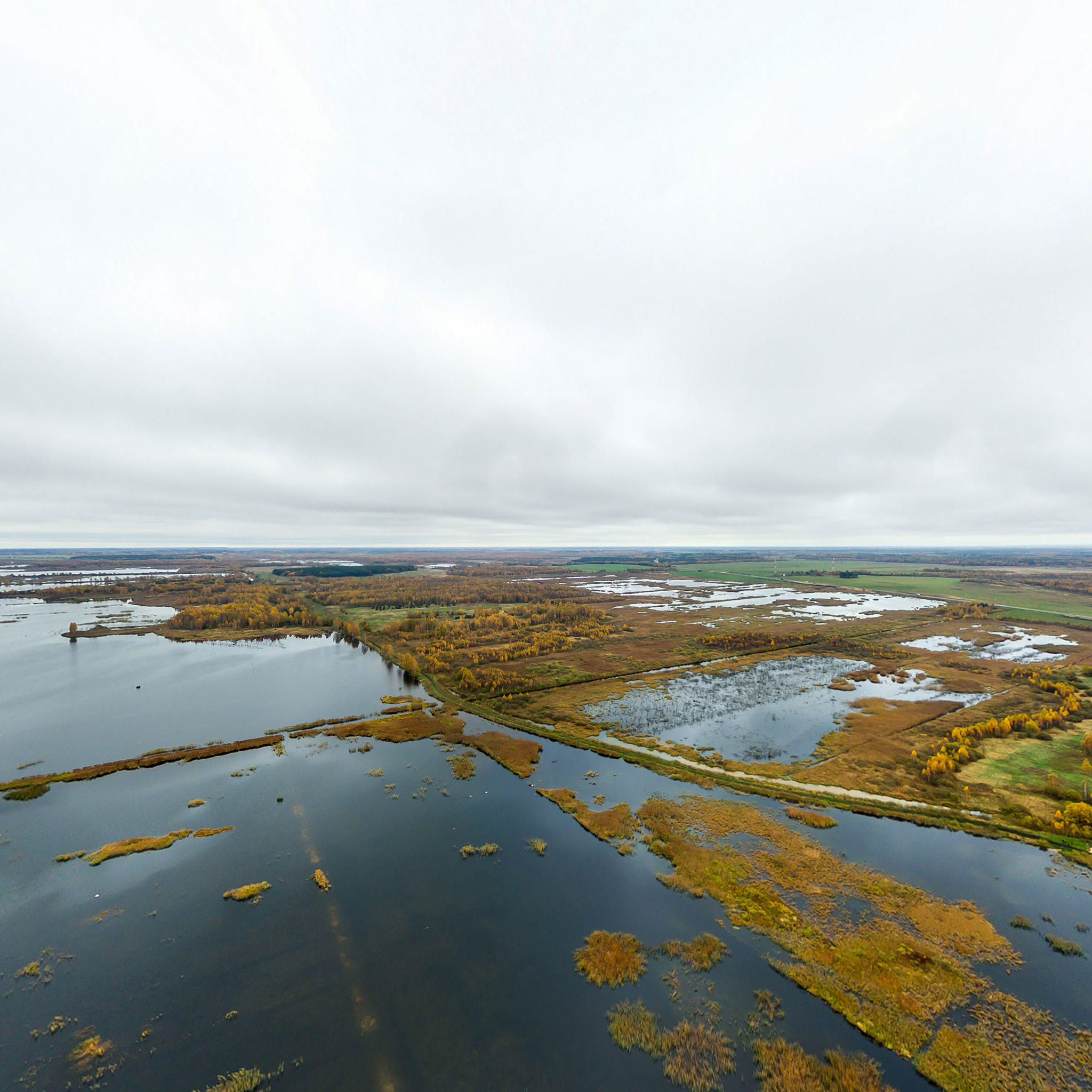 Белорусские болота считают «легкими» Европы