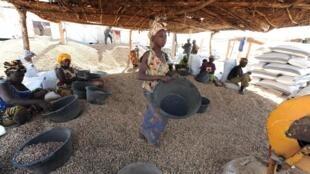 Rewɓe no suɓa gerte (tiga) e nder  wuro Dingiraay, Senegal