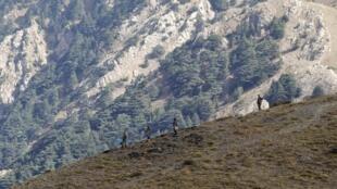 Zone montagneuse de Tizi Ouzou, en Kabylie.
