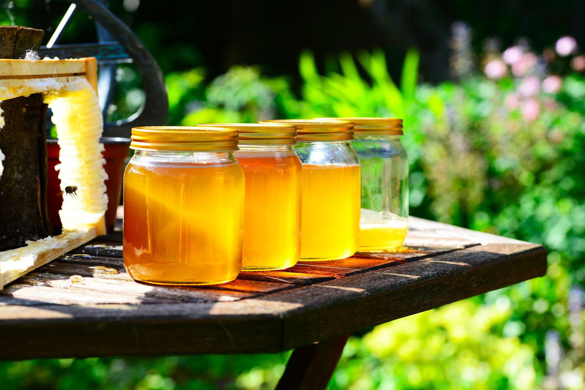 honey miel abeille
