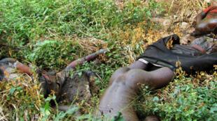 Um dos 15 cadáveres fotografos dia 1 de Maio de 2016 na Gorongosa