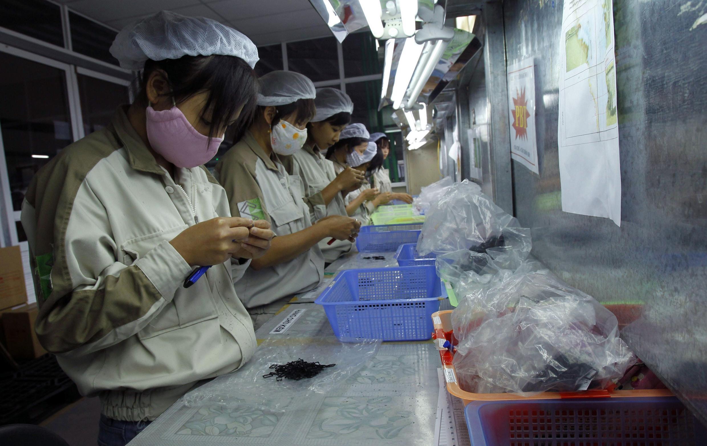 Một nhà máy sản xuất linh kiện điện tử ở ngoại ô Hà Nội