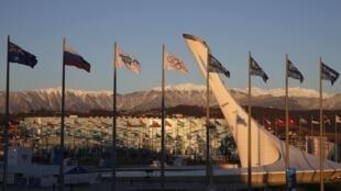 Вид на ледовый дворец в Сочи, январь 2014.