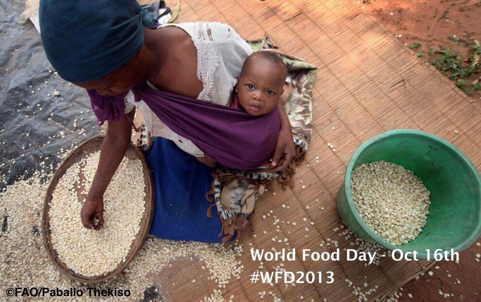 Cartaz da campanha da FAO para o Dia Mundial da Alimentação 2013.