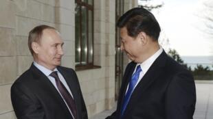資料照片:普京與習近平2月6日在索契會晤