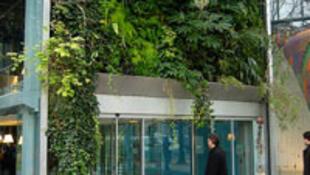 Fondation Cartier, Paris.