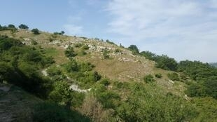 Collines de la Drôme, non loin de la Nationale 7.