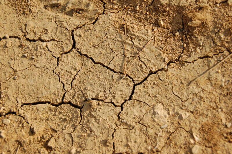 O Banco Mundial teme que a temperatura do planeta aumente dois graus centígrados até 2040