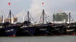 Ảnh một đội tàu cá Trung Quốc, trú cảng Đông Phương, Hải Nam.