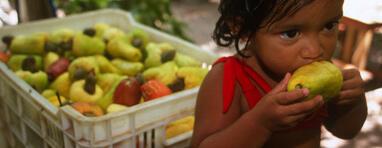 A FAO quer reduzir a fome e má nutrição infantil, e acabar com a fome antes de 2025.