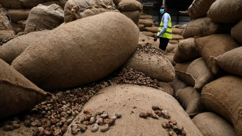 Côte d'Ivoire: bientôt une bourse des matières premières agricoles en Afrique de l'Ouest