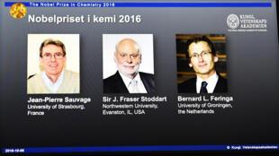 Los ganadores del Nobel de Química.