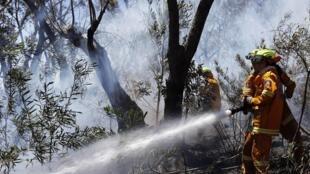 Nhiệt độ cuối năm lên đến 38°C: lính cứu hỏa Úc dập tắt cháy rừng