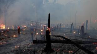 Um incêndio queima um trecho da selva amazônica em Machadinho do Oeste (Rondônia), em 2 de setembro de 2019.