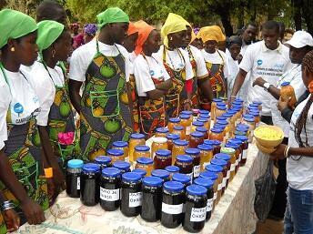 Ação de formação em Tite, Guiné-Bissau.