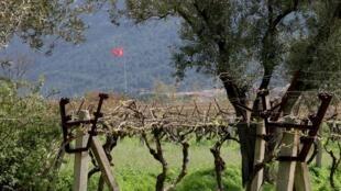 La région d'Izmir, en Turquie.