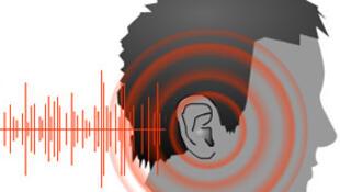 Tous les bruits de notre environnement sonore éveillent des émotions et reflètent le monde qui nous entoure.