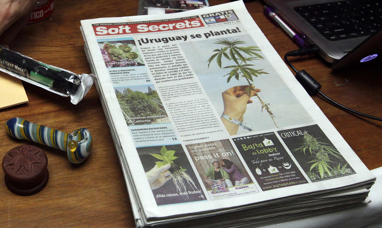 El proyecto permite poseer hasta 40 gramos de marihuana mensuales a consumidores registrados, 6 plantas a quienes cultiven la droga y 90 a clubes de consumidores.