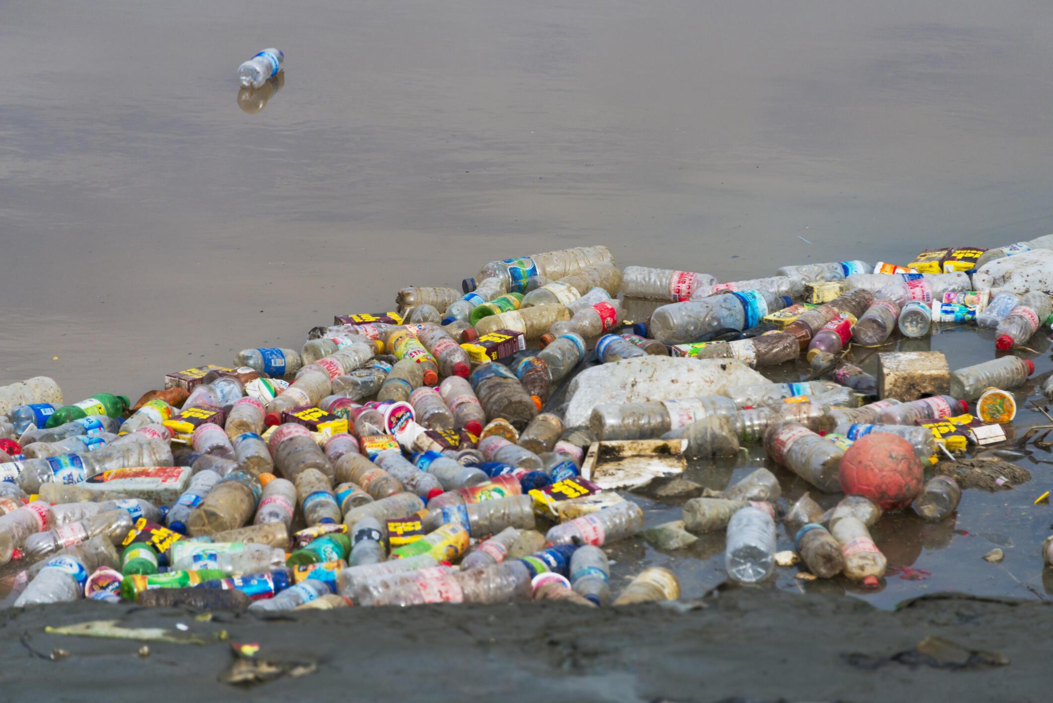 Bouteilles, sacs et bouchons en plastique, cotons-tiges sont «les premiers prédateurs des océans», affirme l'association Surfrider.