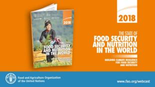 Organização das Nações Unidas para a Agricultura e Alimentação (FAO) apresenta nesta terça-feira (11) o mais recente relatório sobre o Estado da Segurança Alimentar e Nutrição no Mundo.