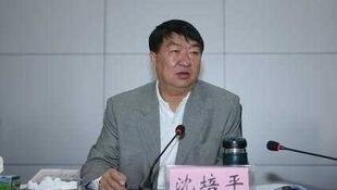 Chine Corruption Shen Peiping Vice Vice gouverneur de la Province Yunnan.