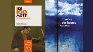 Montage - couvertures - Baudelaire - 100 mots - Carlo Ossola - L'ombre des heures - Anne Dupin
