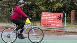 Malgré le vote de la Premier ministre néo-zélandaise Jacinda Ardern, le référendum du 17 octobre 2020 pourrait voir, selon les premières estimations, le rejet de la légalisation du cannabis.