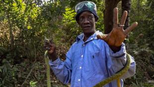 Naby Camara vient de capturer un mamba vert, l'un des serpents les plus dangereux d'Afrique.
