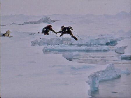 Projet Arctique International, 1995.