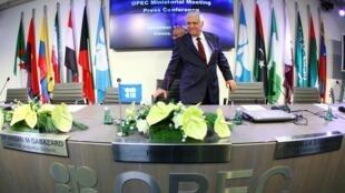 Le secrétaire général de l'OPEP Adullah al-Badri, à Vienne en Autriche, le 12 décembre 2012.