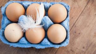 Une boite d'œufs.