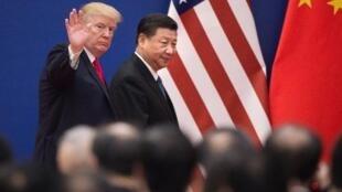 شی جین پینگ و دونالد ترامپ رؤسای جمهوری چین و آمریکا در پکن. ٩ نوامبر ٢٠١٧