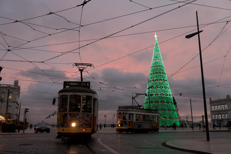 Рождественская ель в Лиссабоне, Португалия.