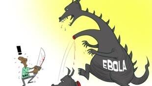 Surto de ébola completa um ano na RDC. ONU pede intensificação da resposta global