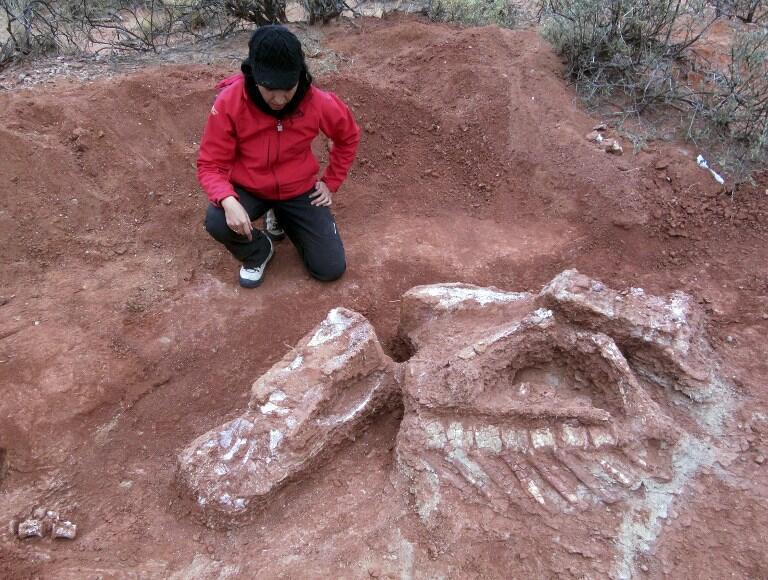 Un des chercheurs sur le site paléontologique de Balde de Leyes dans la province de San Juan, à 1100 kilomètres à l'ouest de Buenos Aires.