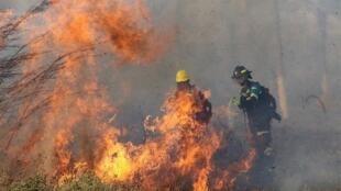 آتش سوزی آمازون هزاران هکتار جنگل را در بولیوی بلعید