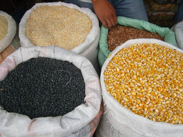 Na Guiné-Bissau a diversificação dos hábitos alimentares poderia garantir segurança alimentar