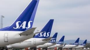 Des avions de la compagnie scandinave SAS sur le tarmac de l'aéroport d'Oslo Gardermoen.