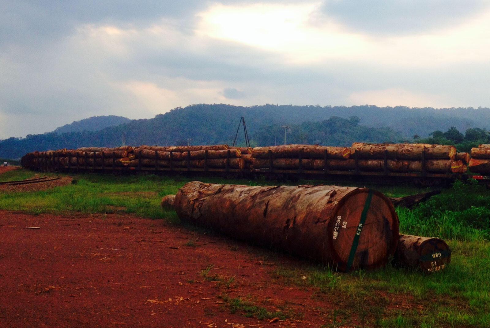 L'essentiel du transport du bois se fait par le train de la gare de Lastourville.