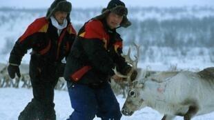 Les défenseurs des droits des peuples autochtones du Nord russe, dont la présidente du parlement des Samis, ont été empêchés par les autorités russes, d'assister à la Conférence mondiale sur les peuples autochtones lundi, au siège de l'ONU à New York.