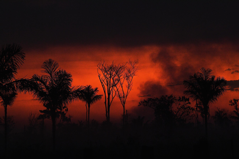 Humo de un incendio en la Amazonia, al norte de Sinop en el estado de Mato Grosso (Brasil), el 11 de agosto de 2020