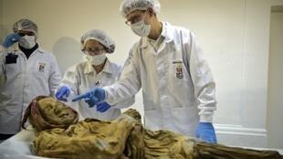Le coroner français Philippe Charlier examine la momie corporelle momifiée du XVIe siècle trouvée en Équateur. Photo datée du 30 janvier 2019.