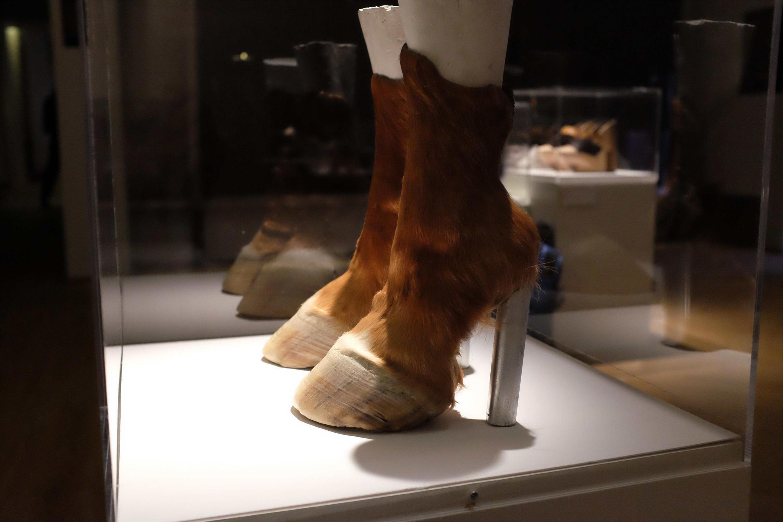 « Horseshoes » (2006) d'Iris Schieferstein dans l'exposition « Marche et démarche ».