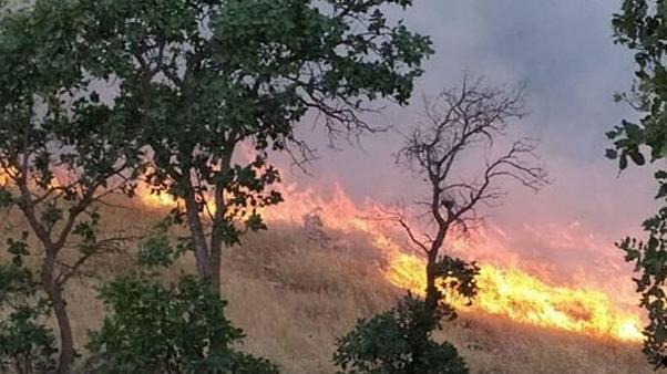 بگفتۀ مقامات محلی این آتش سوزی عصر روز پنجشنبه به دلیل اختلاف میان دو دامدار ساکن حاشیۀ کوه خائیز آغاز شده و به سبب شدت وزش باد بسرعت مراتع و جنگل ها را در بر گرفته است.