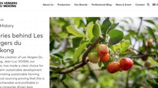 Capture d'écran du site les vergers du Mékong.
