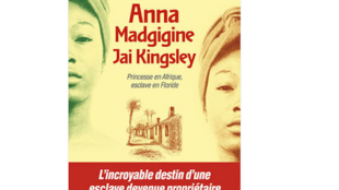 Anna Madgigine Jay Kingsley de Daniel L. Schafer a été publié chez Albin Michel