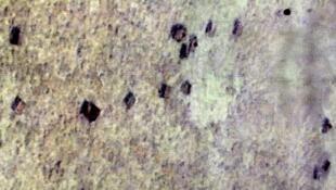Không ảnh cho thấy các điểm xậm là cột bê tông mà Trung Quốc cho xây trên bãi Scarborough Shoal (Biển Đông). Ảnh chụp ngày 31/08/2013, do Bộ Quốc phòng Philippines cung cấp ngày 03/09/2013.