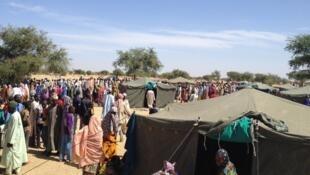 Mafi yawan 'yan gudun hijirar da rikicin Boko Haram ya raba da Muhallansu sun koma sana'ar saran itace.