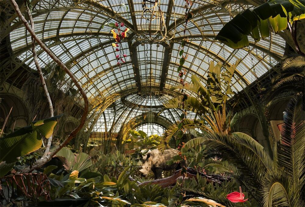 """Paris, Jungle Grand Palais"", 2016."