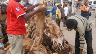 Un vendeur de peaux de bêtes destinées à la fabrication du cuir à Addis Abeba, en Ethiopie.